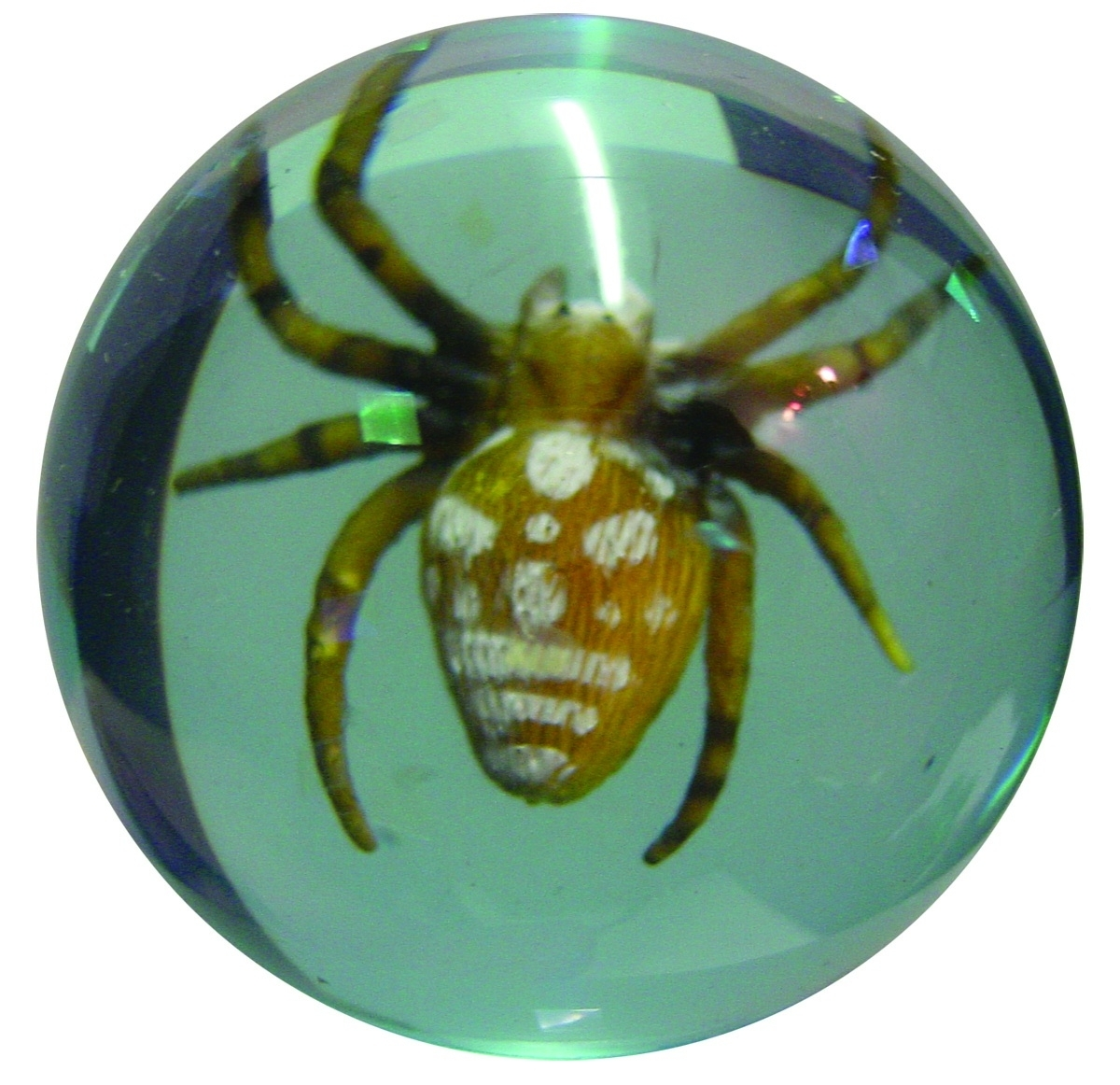 49mm 3-D Spider Super Bouncy Ball (Hedstrom)